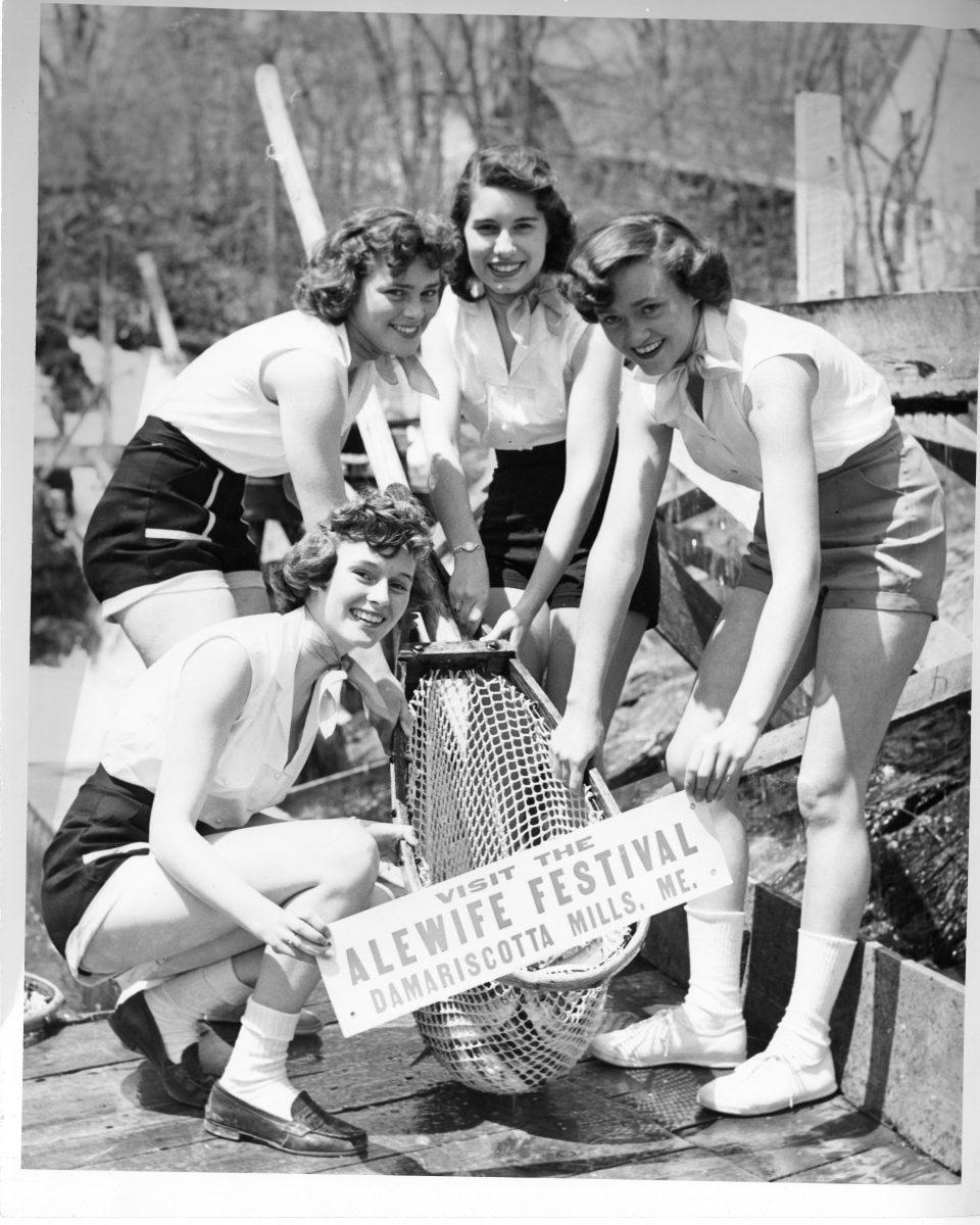 Alewife Festival